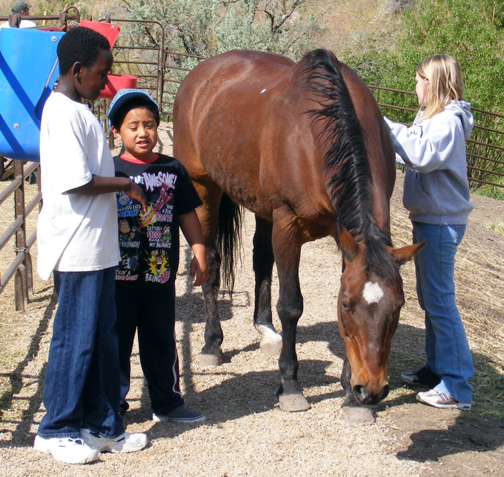 Children-grooming-Bisbee