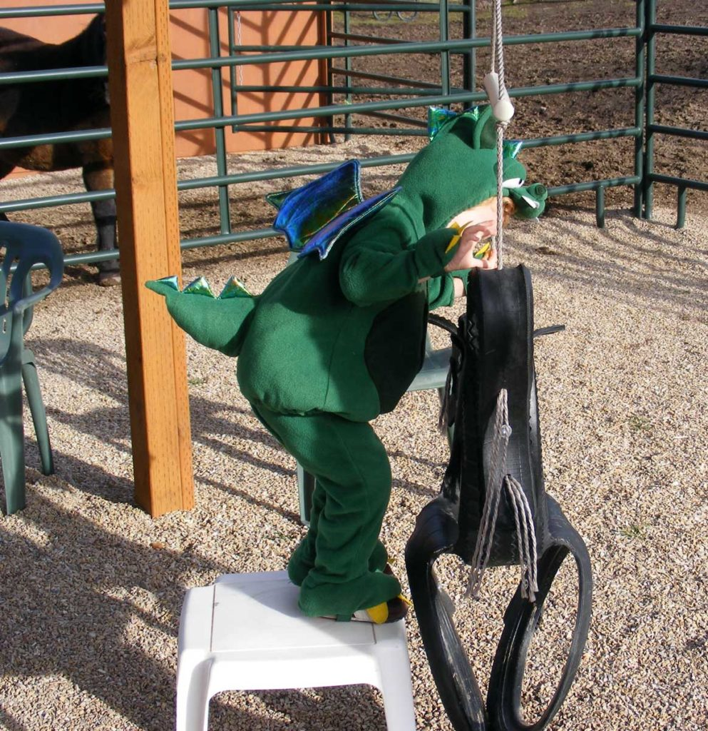 Dragon-climbing-on-swing